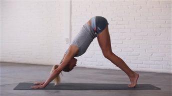 Flexibility Basics