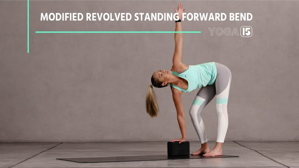 Modified Standing Forward Bend